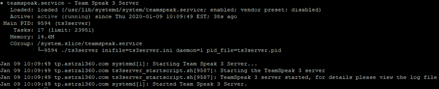 Teamspeak Service