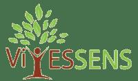 Logo Vivessens | Coaching | hébergement site web Canada