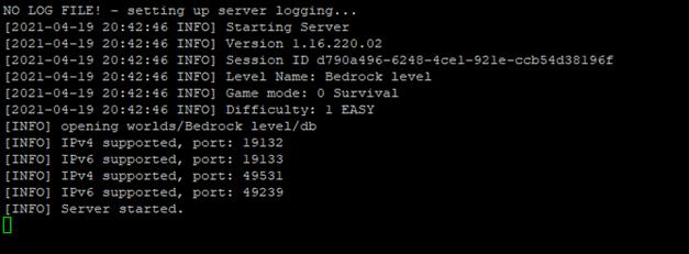 Starting Minecraft Bedrock server | Print screen
