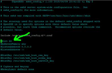 SSH Port | Screen printing | Minecraft Bedrock server on Ubuntu